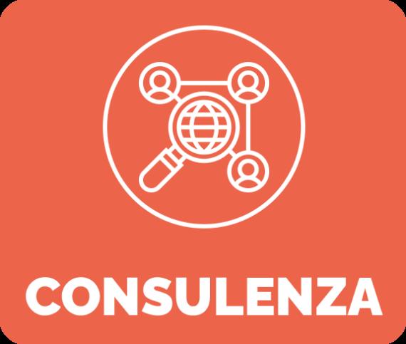 Consulenza Box neg